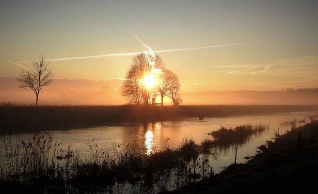 Sonnenaufgang im Machland  Foto Gerald Puchberger