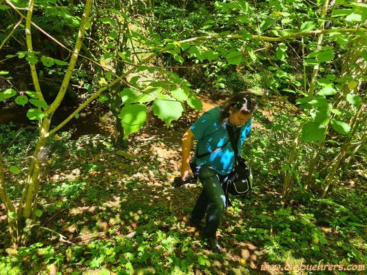 Das seltene Exemplar des Klicki Wickie in freier Wildbahn