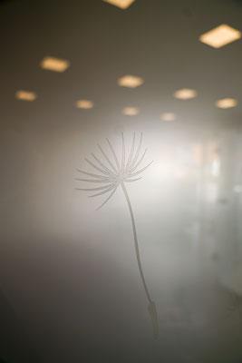 Sandstrahlung - Lasermotiv - Drehtüre - Glastüre - © Glaserei Allgäuer