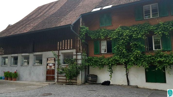 Landwirtschaftliche und genossenschaftliche Spuren in Dornbirn Hatlerdorf