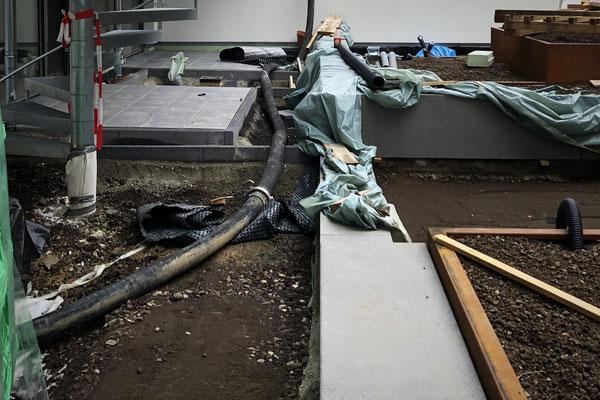 Dachbegrünung extensiv