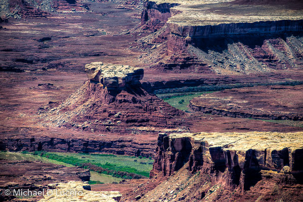 Canyonlands detail from Island in the Sky, Canyonlands NP, Utah