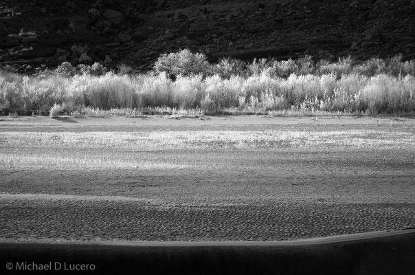 Morning light on the shore of the Colorado. Near Moab, Utah. Photographed using an infrared converted camera.
