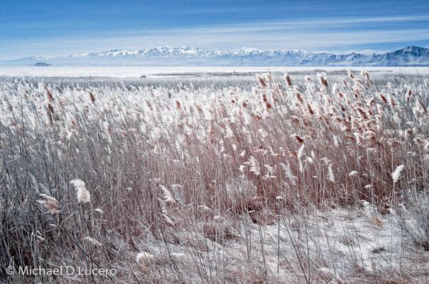 Antelope Island State Park, Great Salt Lake, Utah
