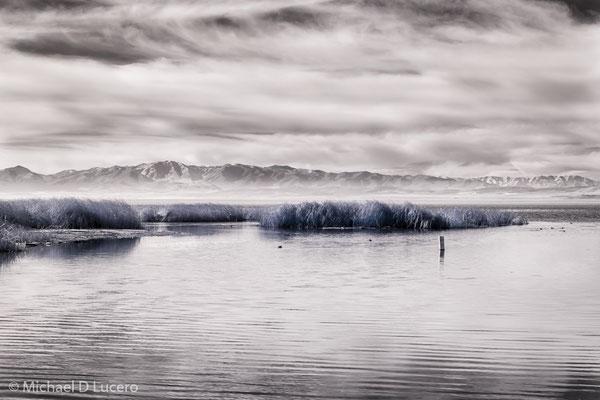 Winter light on Lake Utah