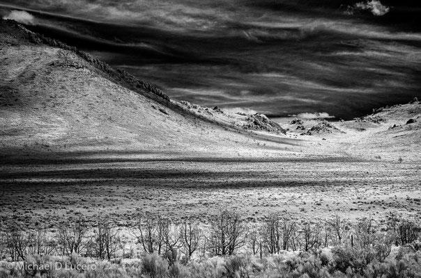 Open field, City of Rocks State Park, Idaho