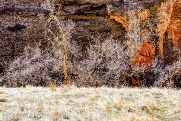 Dinosaur National Monument, Colorado