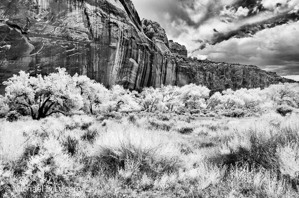 Capitol Reef NP, Utah. Photographed using an infrared converted camera.