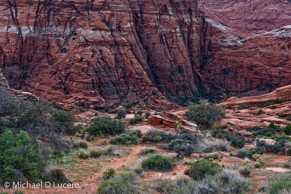 Dusk Light in Snow Canyon SP, Utah