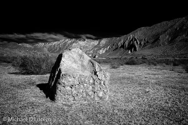 Rock in field, Dinosaur NM, Utah