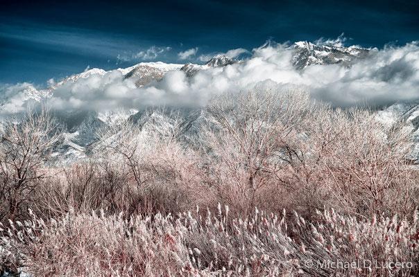 Wasatch range from Jordan River Trail, Utah