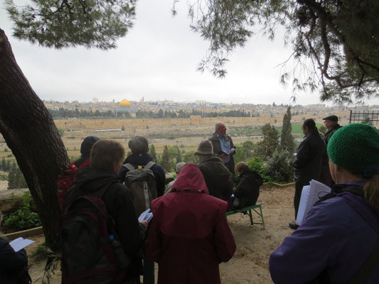 Our group on the Mount of Olives