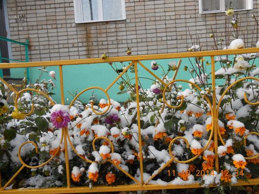 «Под белым покрывалом октября»