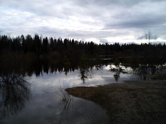 «Речка, реченька, река – люблю твои я берега»