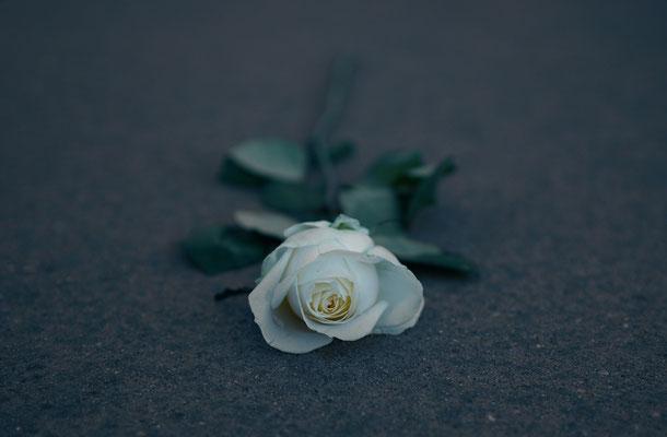 Gedenken am Holocaust-Mahnmal