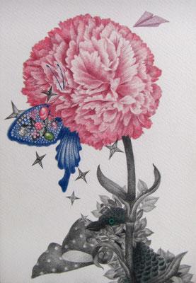 春眠     333×242㎜ 色鉛筆・紙