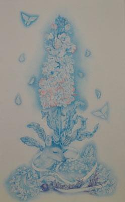 single flower-3/530×333㎜/M10/color pencil on paper/2014