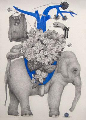 ささやかな支配(elephant)     333×242㎜ 色鉛筆・紙