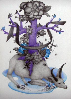 ささやかな支配(antelope)     333×242㎜ 色鉛筆・紙