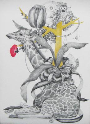 ささやかな支配(giraff)     333×242㎜ 色鉛筆・紙