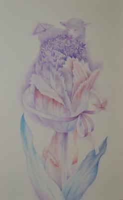 single flower-4/530×333㎜/M10/color pencil on paper/2014