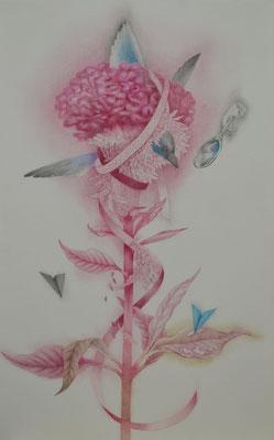 single flower-1/530×333㎜/M10/color pencil on paper/2014