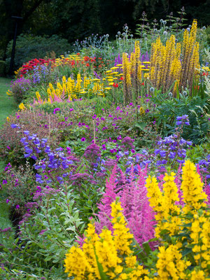 Botanic Gardens, Glasgow, Ireland.