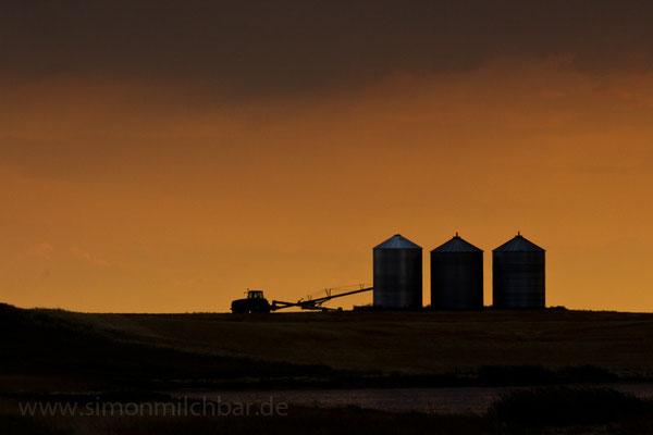 Grain Silo's, Drumheller, Alberta.