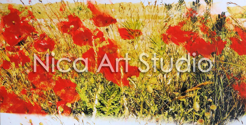 Poppy field, 2015, 42 x 21 cm, photograph with oil paint