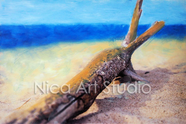 Holz am Strand, 2017, 30 x 20 cm, Fotografie mit Ölfarbe