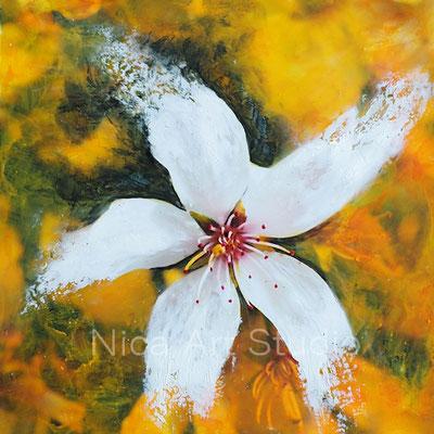 Kirschblüte, 2018, 20 x 20 cm, Fotografie mit Ölfarbe