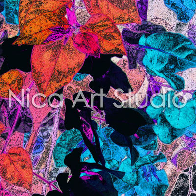 Bougainvillea chrom, 2014, 30 x 20 cm, Fotografie mit Acrylfarbe