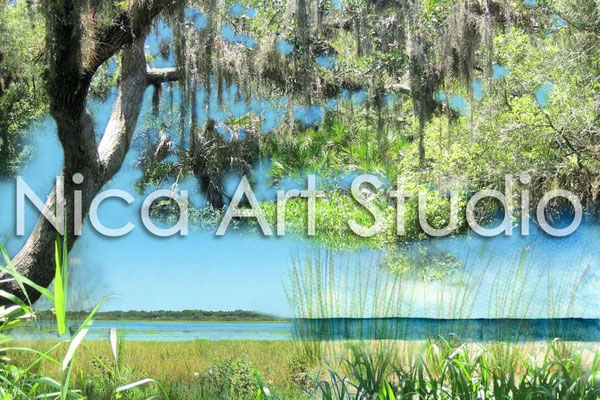 Florida, 40 x 30 cm, 2014, Print auf Silk Fotopapier (von Fotografie + Zeichnung + Aquarell)