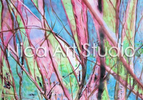 Viele Rote Zweige, 2015, 30 x 21 cm, Papierdruck mit Aquarell und Moorlauge