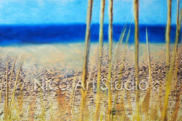 Gräser am Strand, 2017, 30 x 20 cm, Fotografie mit Ölfarbe, in der Galerie KuRa Hamburg