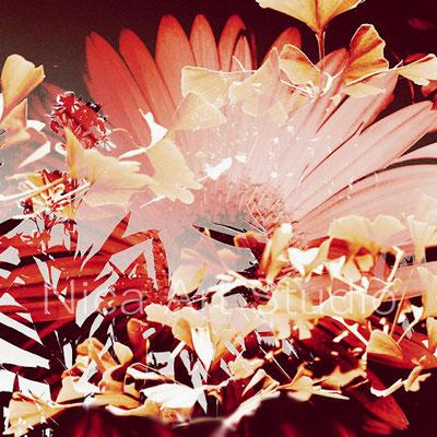 Gerbera & oleander, 30 x 30 cm, aluminum print