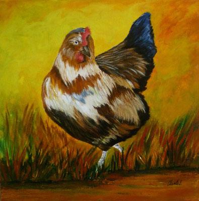 Poule, acrylique  30x30