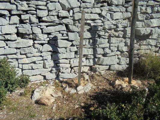 Plantations de vignes