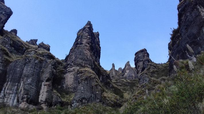 Von der landschaftlichen Vielfalt zeugt auch der steinerne Wald