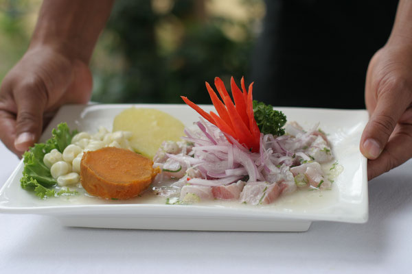 Perus Leibspeise Ceviche