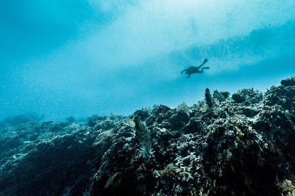 Photo of a scuba diver above me