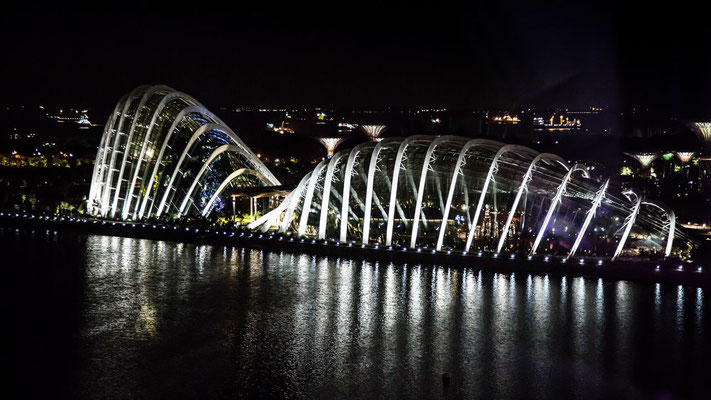 Picture of the Garden by the Bay in Singapore