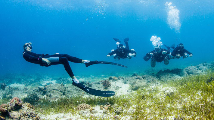 Picture of a free diver playing with scuba divers