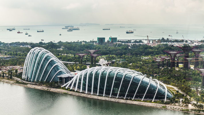 Garden by the Bay of Singapore photo