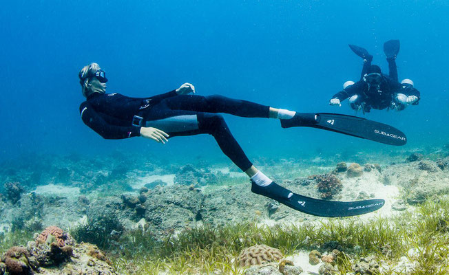 Photo of a free diver with scuba divers