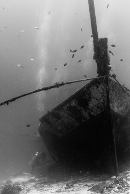 Wreck photo in black and white