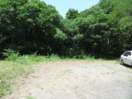 森の入口の駐車場です。