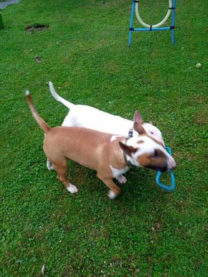 Bridget et Winsley
