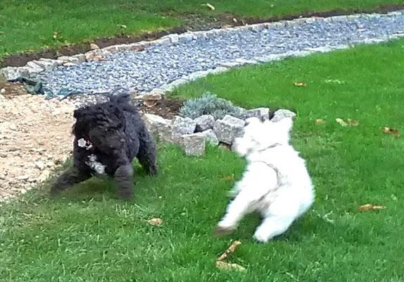 Oscar and Cassie
