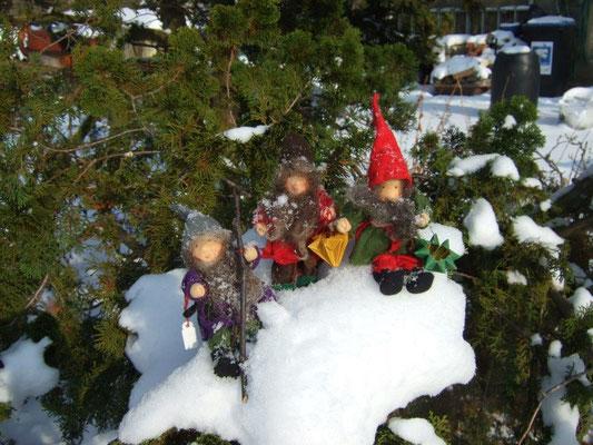 Waldorfwichtel im Schnee